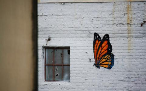 Image of a butterfly painted on a wall with broken window