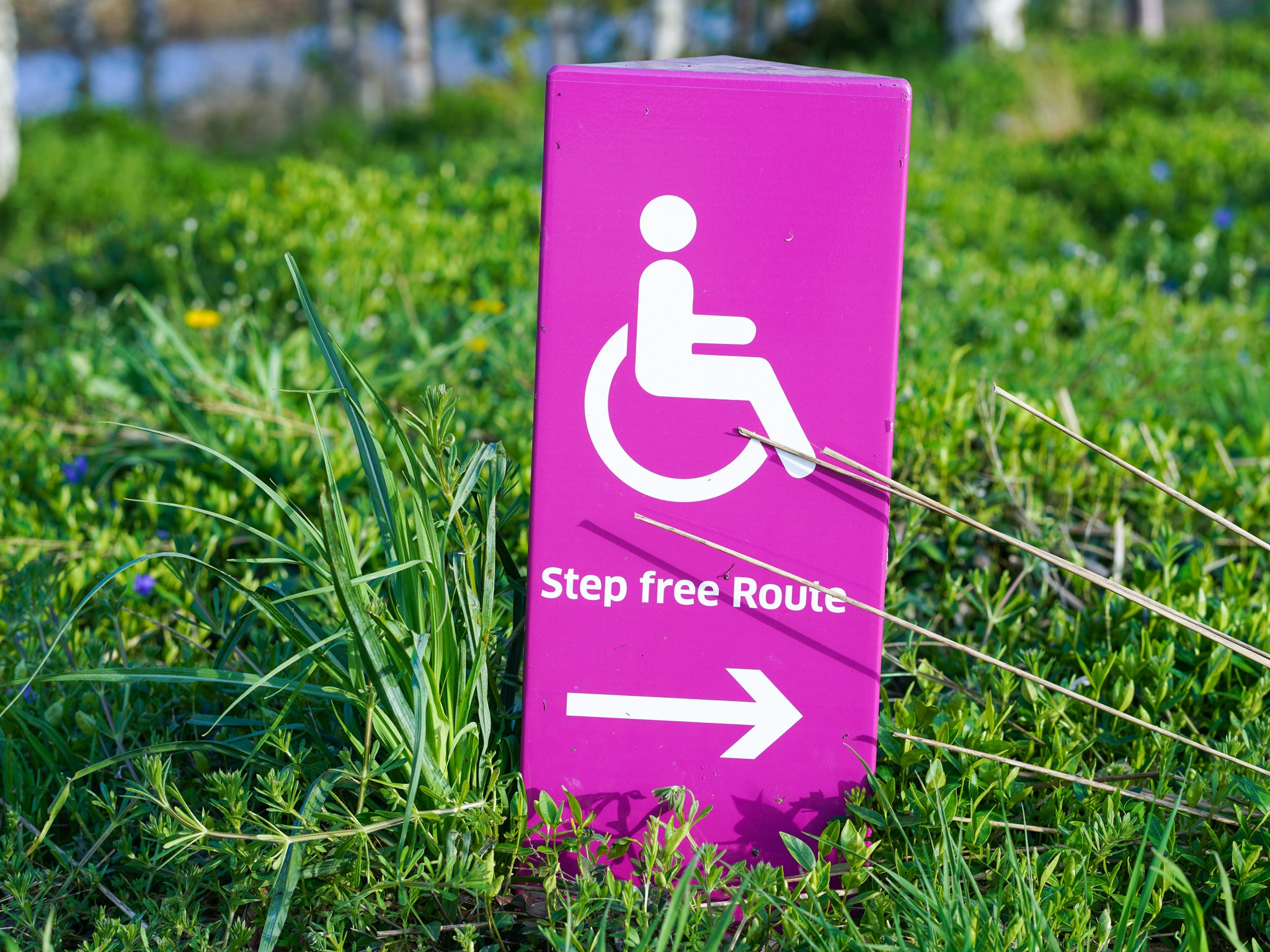 Image of a sign indicating a step free path